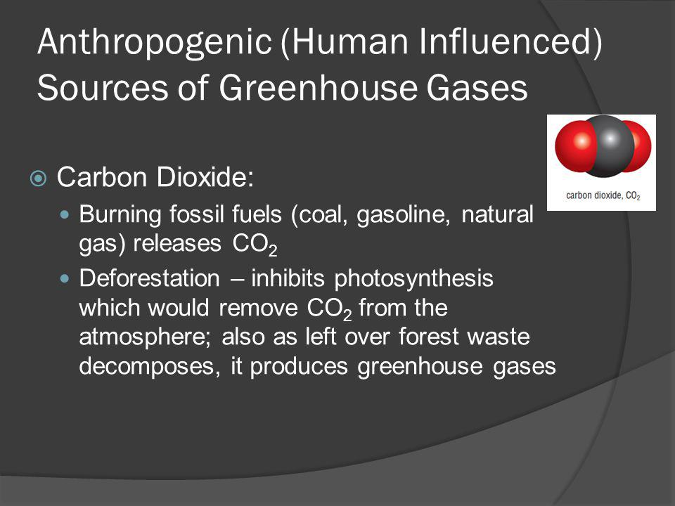 Anthropogenic (Human Influenced) Sources of Greenhouse Gases