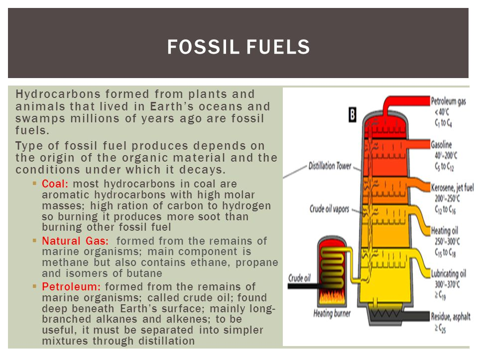 Fossil Fuels Hydrocarbons formed from plants and animals that lived in Earth's oceans and swamps millions of years ago are fossil fuels.
