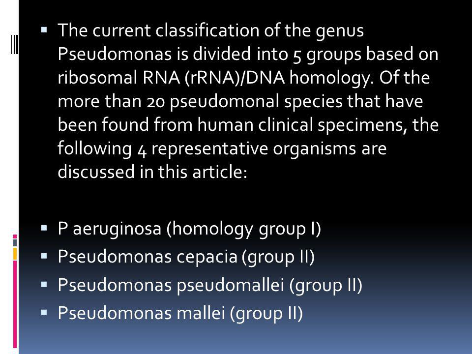 The current classification of the genus Pseudomonas is divided into 5 groups based on ribosomal RNA (rRNA)/DNA homology. Of the more than 20 pseudomonal species that have been found from human clinical specimens, the following 4 representative organisms are discussed in this article: