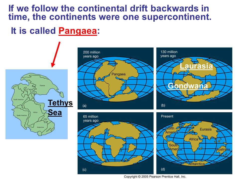 If we follow the continental drift backwards in time, the continents were one supercontinent.