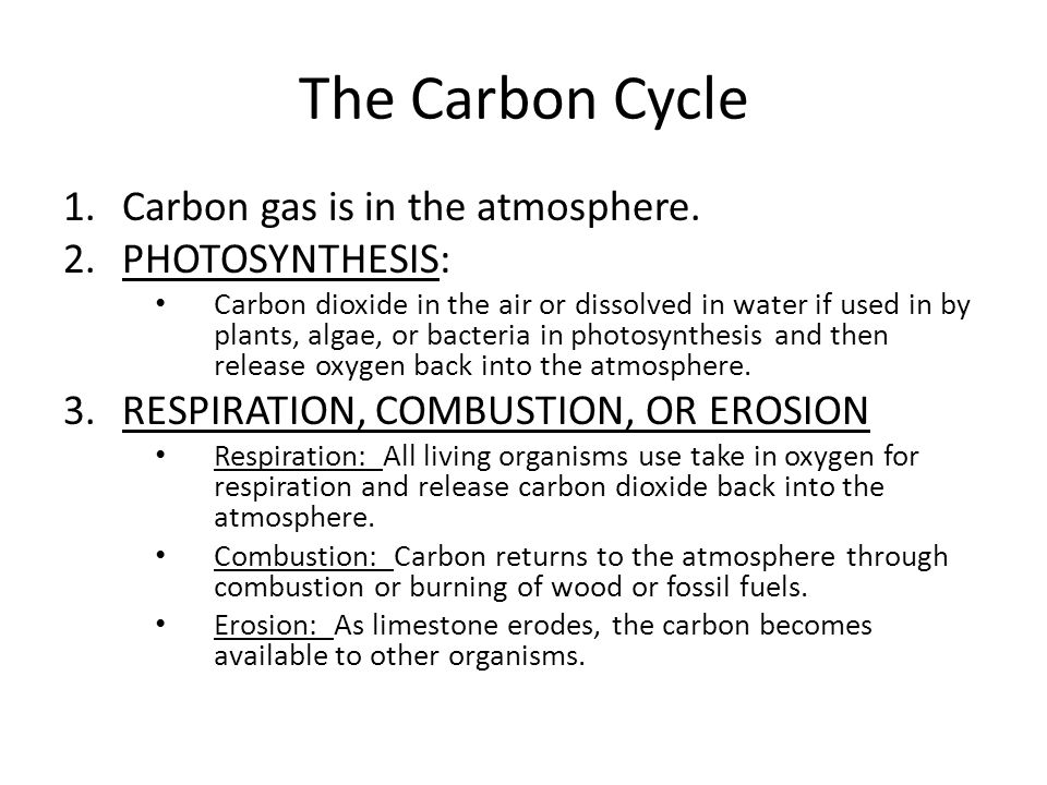 The Carbon Cycle Carbon gas is in the atmosphere. PHOTOSYNTHESIS: