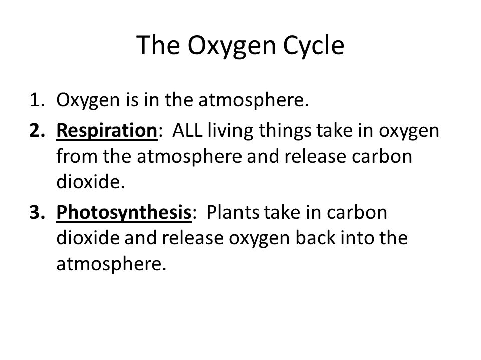 The Oxygen Cycle Oxygen is in the atmosphere.