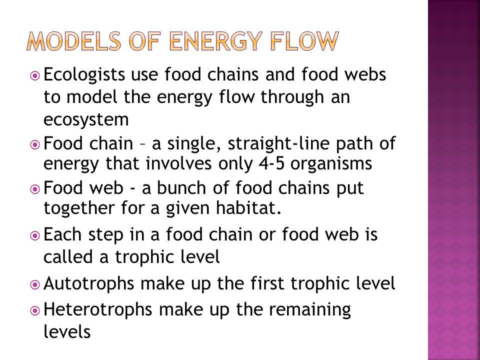 Models of energy flow Ecologists use food chains and food webs to model the energy flow through an ecosystem.