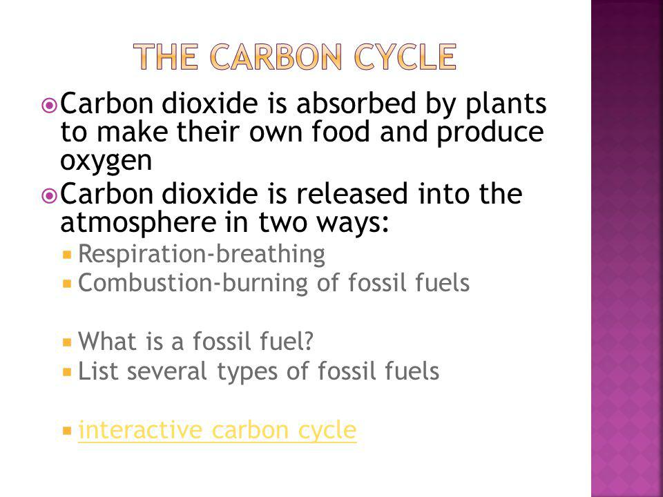 The carbon cycle Carbon dioxide is absorbed by plants to make their own food and produce oxygen.