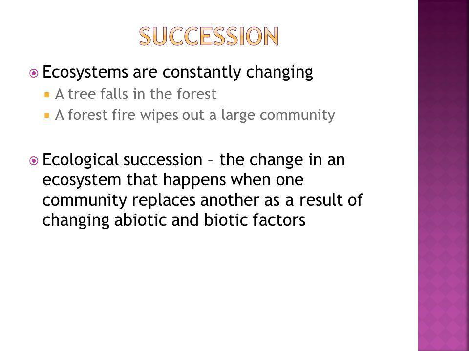Succession Ecosystems are constantly changing