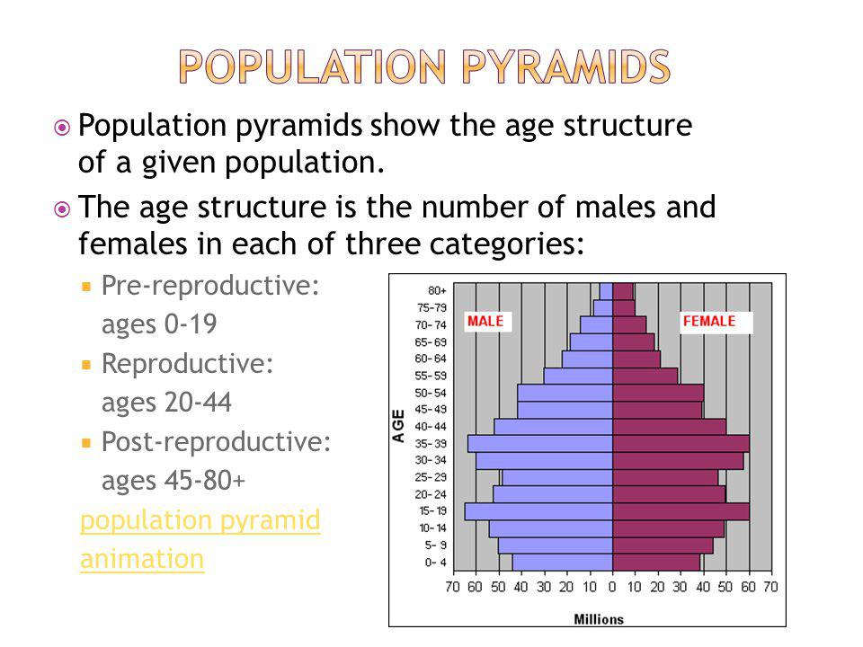Population pyramids Population pyramids show the age structure of a given population.