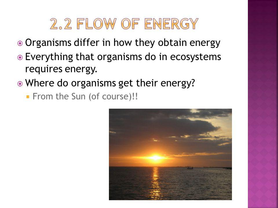2.2 Flow of energy Organisms differ in how they obtain energy