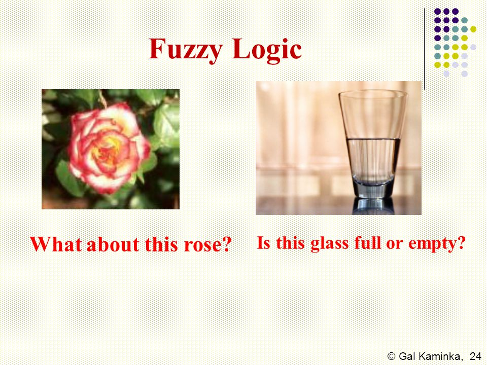 Fuzzy Logic What about this rose Is this glass full or empty