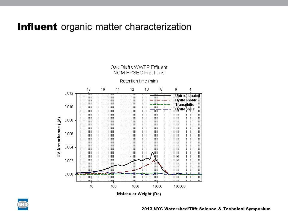Influent organic matter characterization