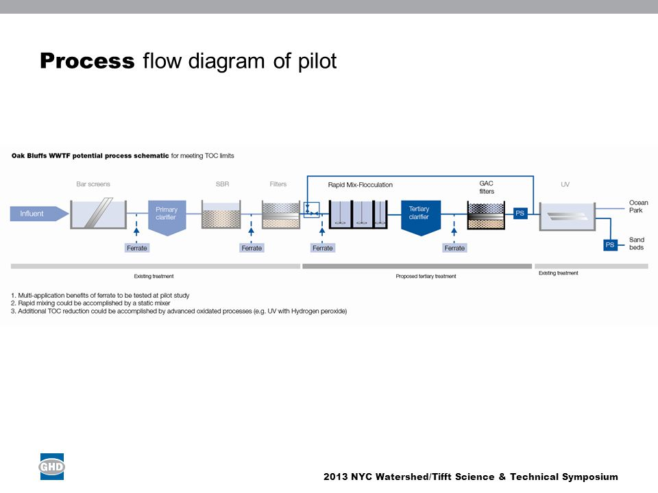 Process flow diagram of pilot