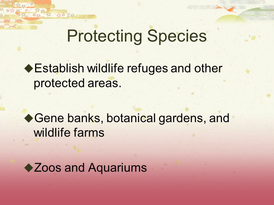 Protecting Species Establish wildlife refuges and other protected areas. Gene banks, botanical gardens, and wildlife farms.