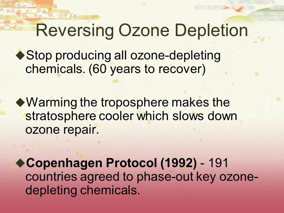Reversing Ozone Depletion