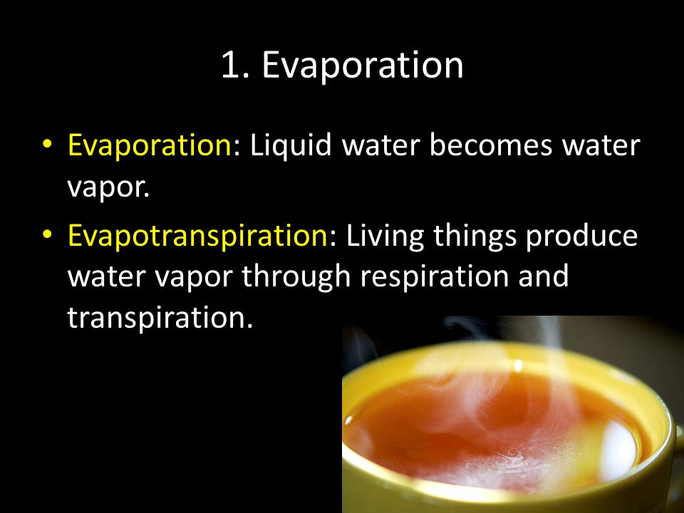 1. Evaporation Evaporation: Liquid water becomes water vapor.