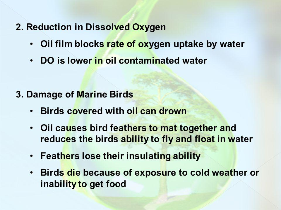 Reduction in Dissolved Oxygen