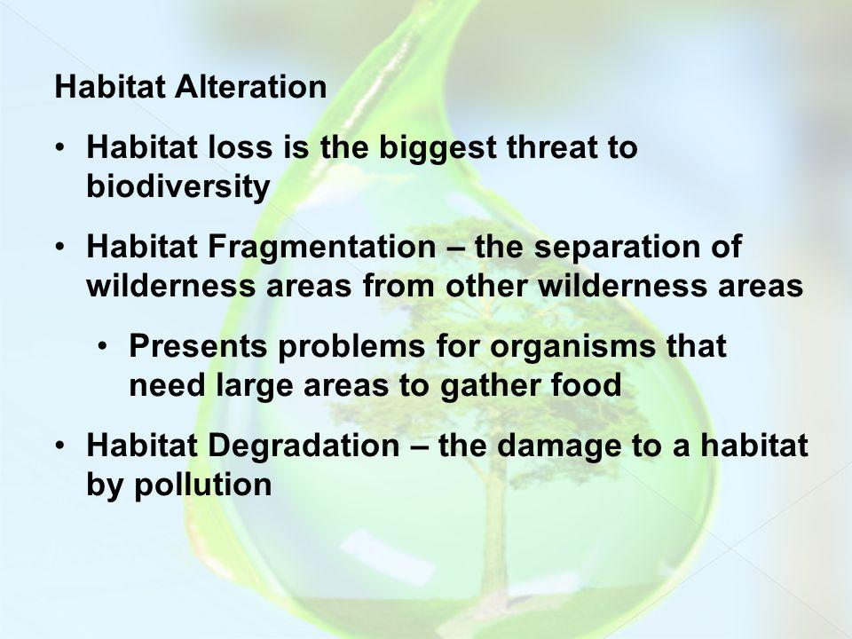 Habitat Alteration Habitat loss is the biggest threat to biodiversity.