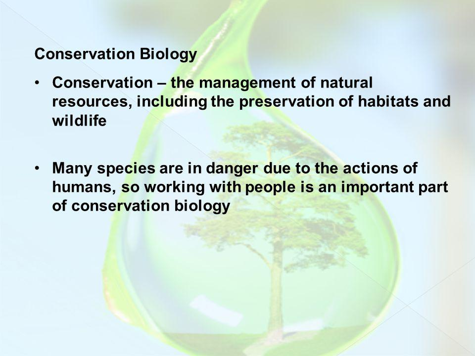Conservation Biology Conservation – the management of natural resources, including the preservation of habitats and wildlife.
