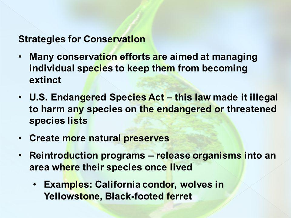 Strategies for Conservation