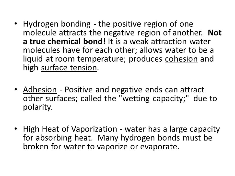 Hydrogen bonding - the positive region of one molecule attracts the negative region of another. Not a true chemical bond! It is a weak attraction water molecules have for each other; allows water to be a liquid at room temperature; produces cohesion and high surface tension.