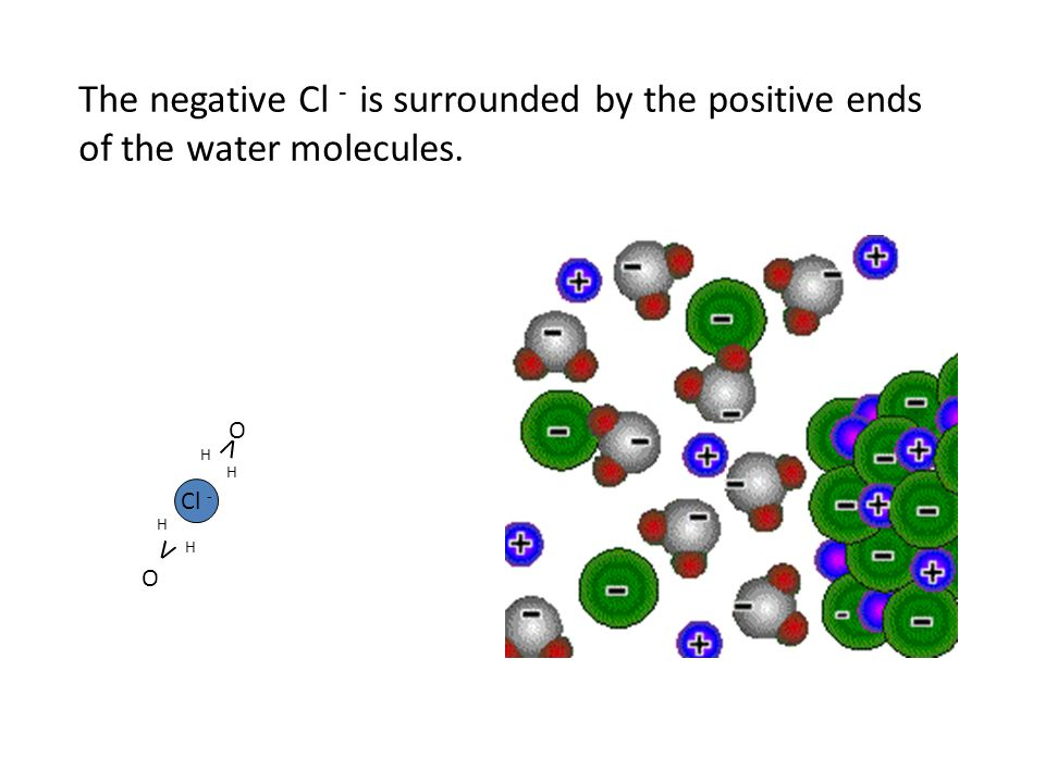The negative Cl - is surrounded by the positive ends
