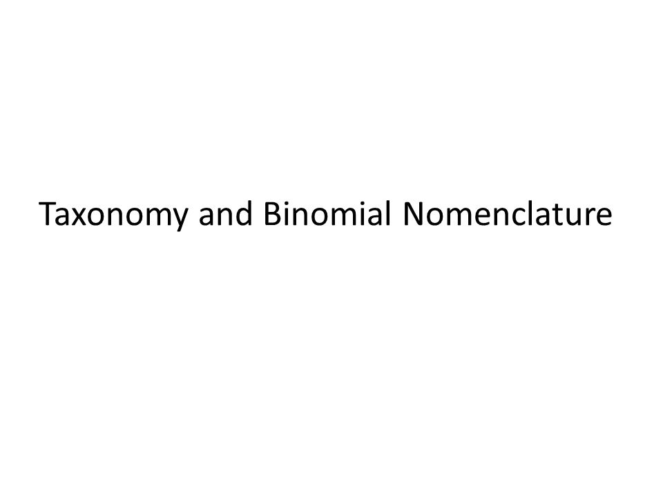Taxonomy and Binomial Nomenclature