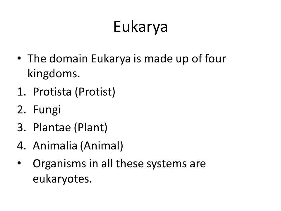 Eukarya The domain Eukarya is made up of four kingdoms.