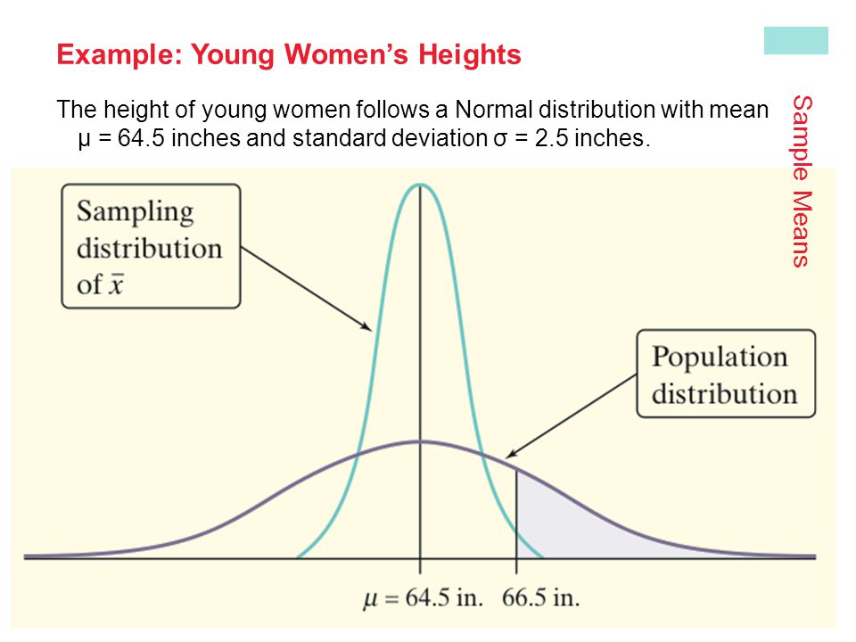 Example: Young Women's Heights