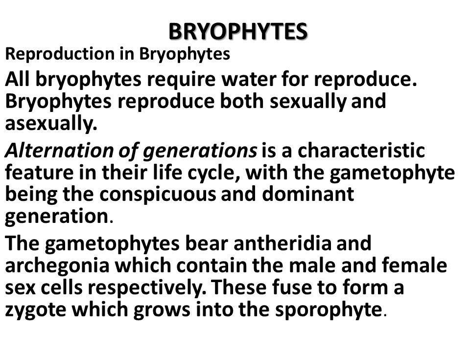 BRYOPHYTES Reproduction in Bryophytes. All bryophytes require water for reproduce. Bryophytes reproduce both sexually and asexually.