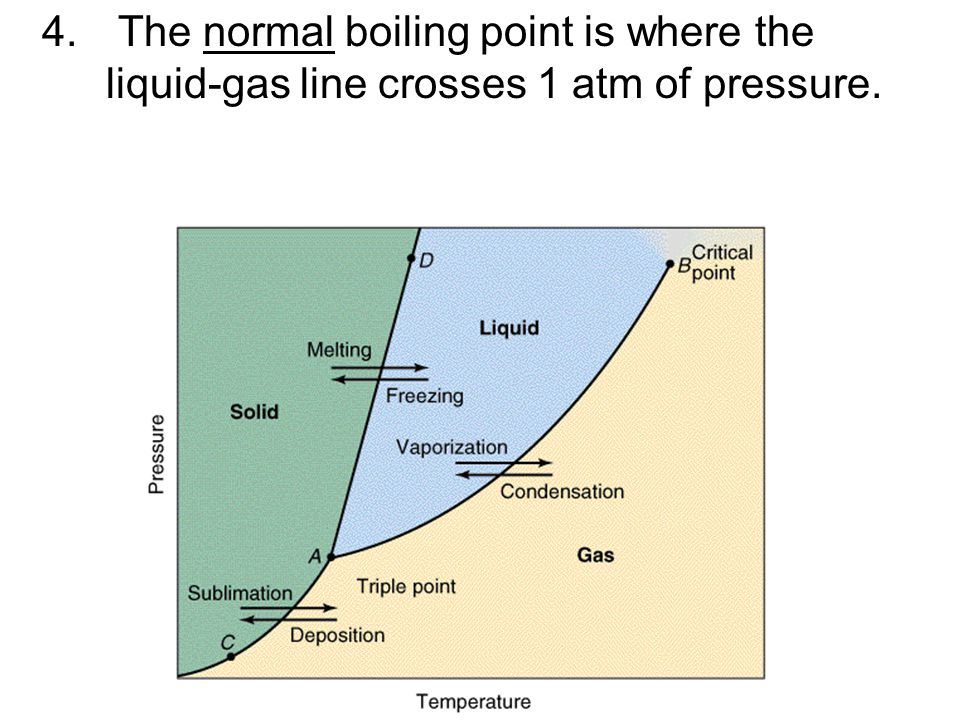 The normal boiling point is where the liquid-gas line crosses 1 atm of pressure.