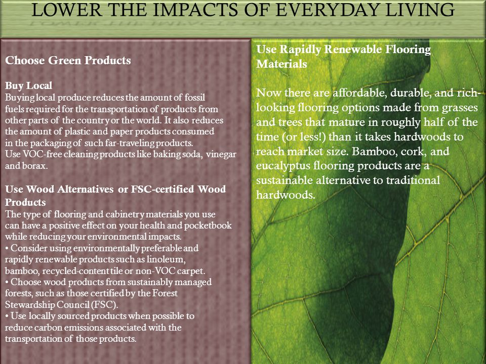 LOWER THE IMPACTS OF EVERYDAY LIVING