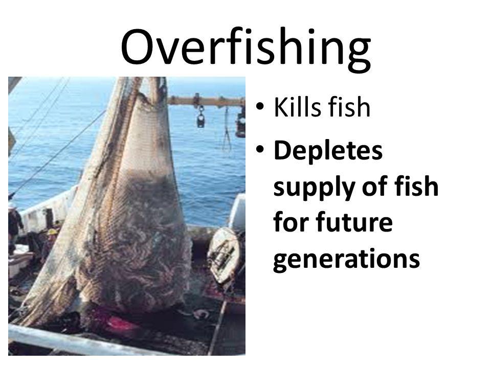 Overfishing Kills fish Depletes supply of fish for future generations