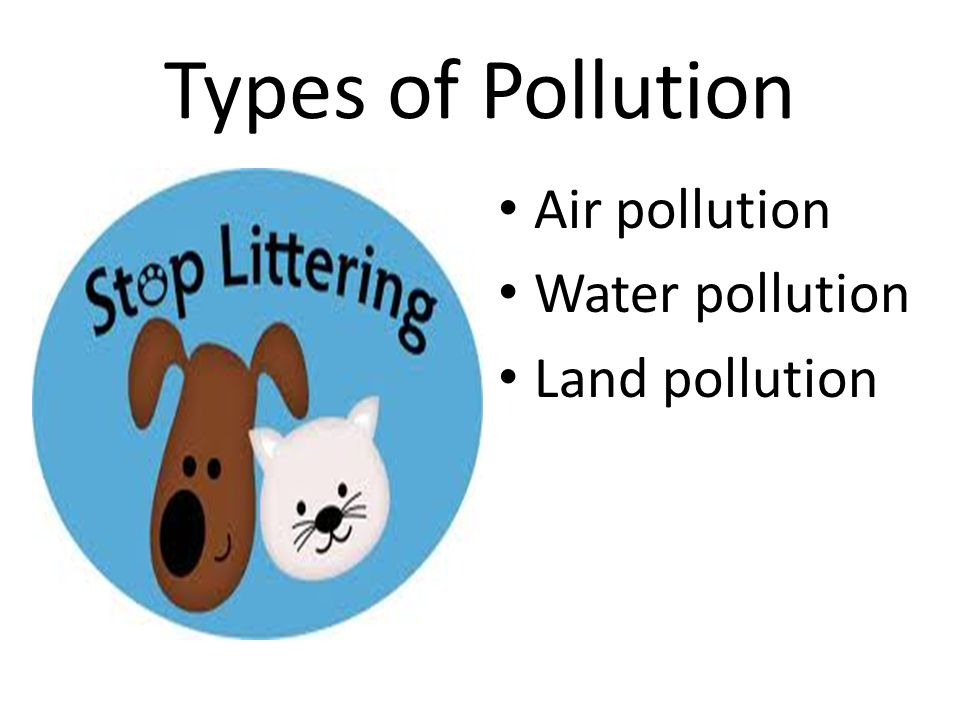 Types of Pollution Air pollution Water pollution Land pollution