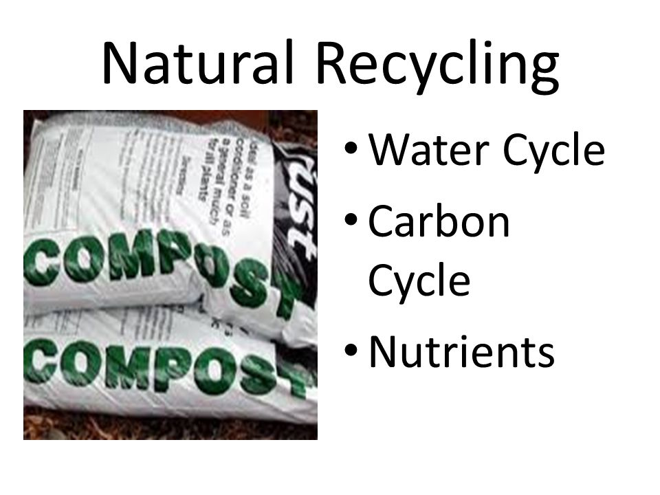Natural Recycling Water Cycle Carbon Cycle Nutrients