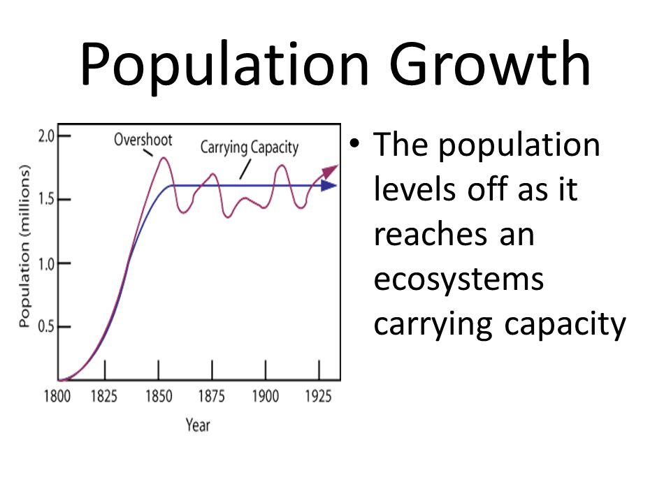 Population Growth The population levels off as it reaches an ecosystems carrying capacity