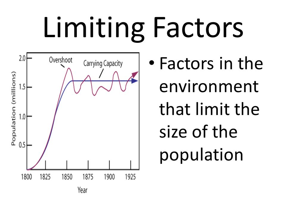 Limiting Factors Factors in the environment that limit the size of the population
