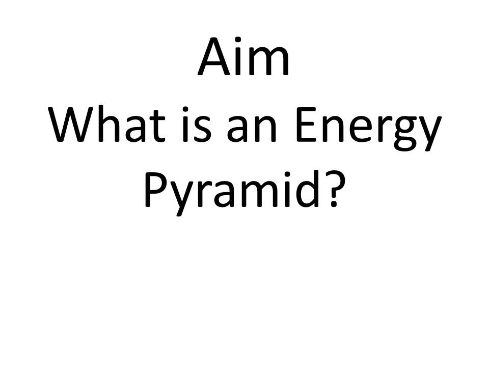 Aim What is an Energy Pyramid