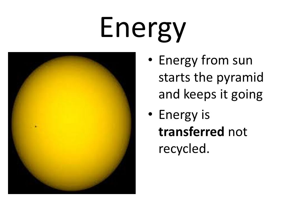 Energy Energy from sun starts the pyramid and keeps it going