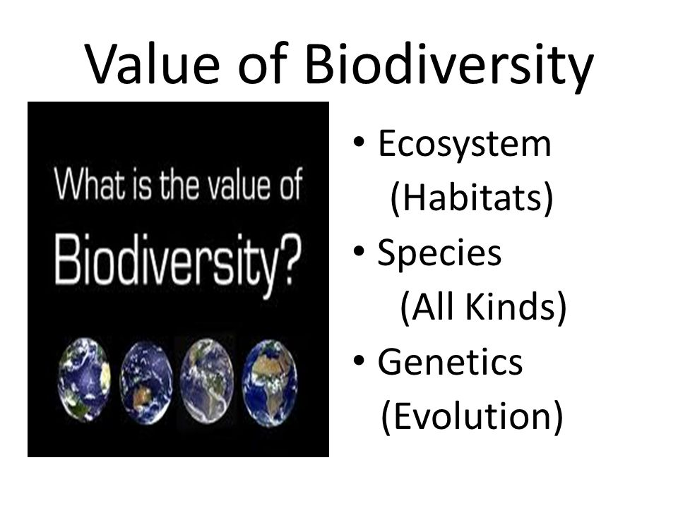 Value of Biodiversity Ecosystem (Habitats) Species (All Kinds)