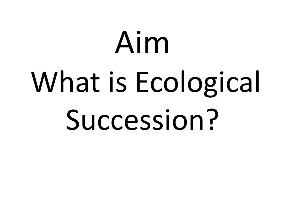 Aim What is Ecological Succession