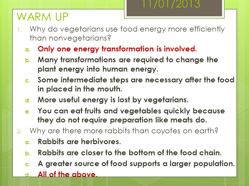11/01/2013 WARM UP Why do vegetarians use food energy more efficiently than nonvegetarians Only one energy transformation is involved.