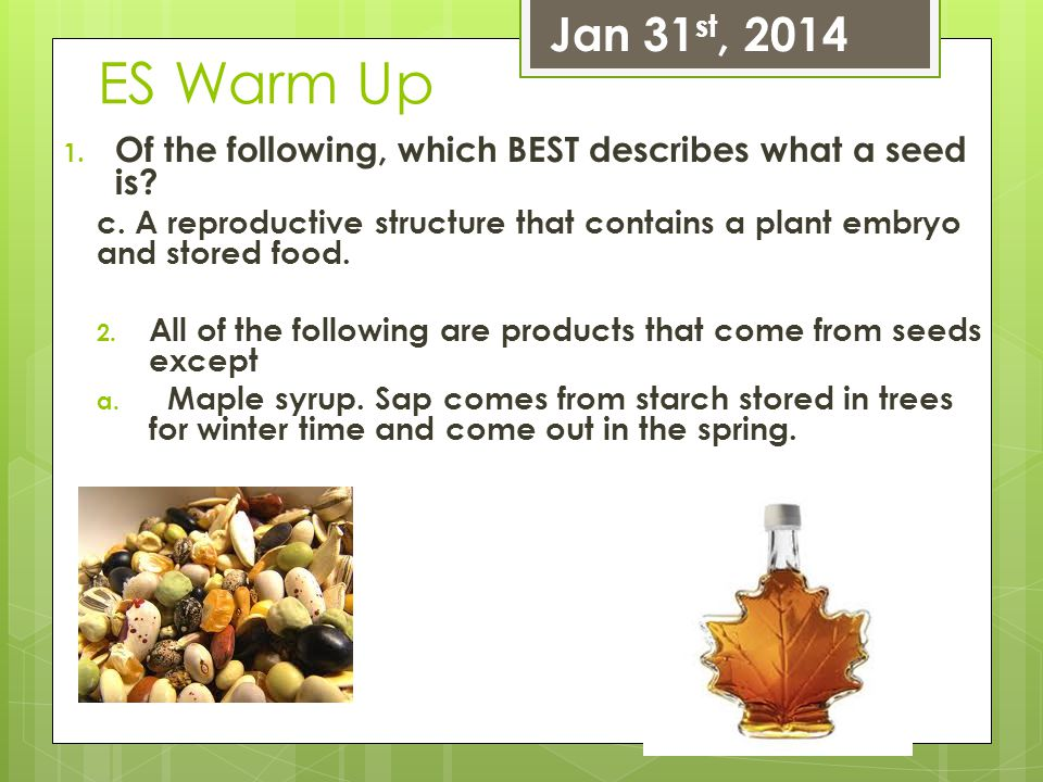Jan 31st, 2014 ES Warm Up. Of the following, which BEST describes what a seed is