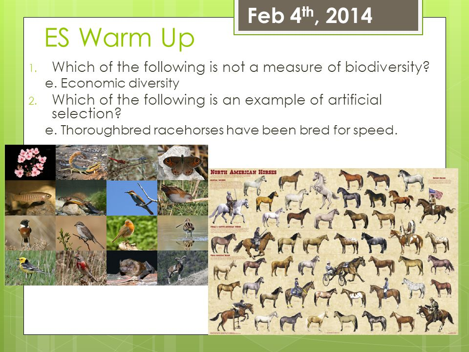 Feb 4th, 2014 ES Warm Up. Which of the following is not a measure of biodiversity e. Economic diversity.