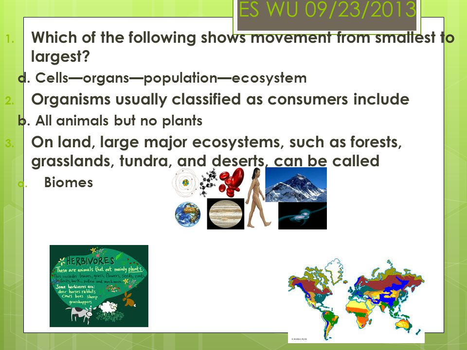 ES WU 09/23/2013 Which of the following shows movement from smallest to largest d. Cells—organs—population—ecosystem.