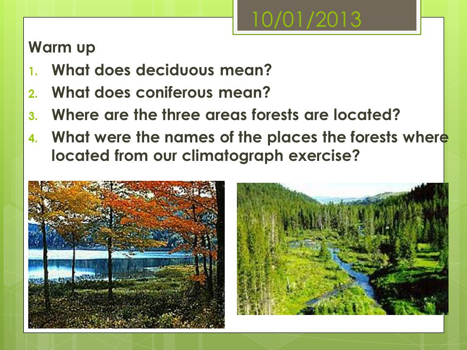 10/01/2013 Warm up What does deciduous mean