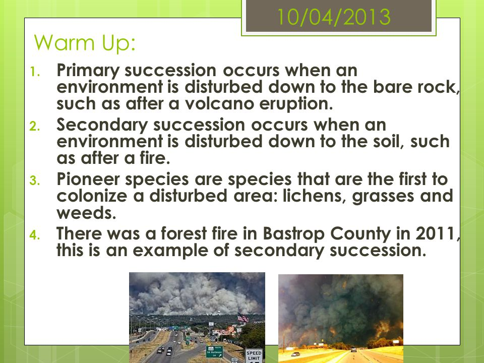 10/04/2013 Warm Up: Primary succession occurs when an environment is disturbed down to the bare rock, such as after a volcano eruption.
