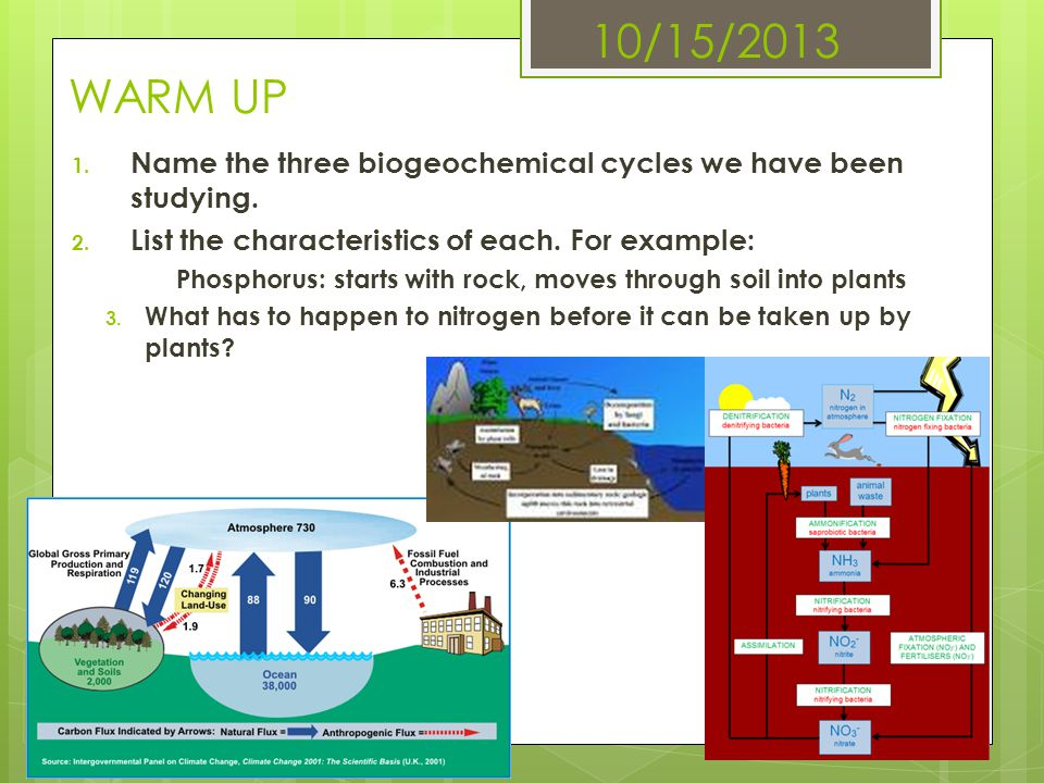 10/15/2013 WARM UP Name the three biogeochemical cycles we have been studying. List the characteristics of each. For example: