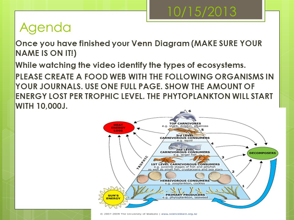 10/15/2013 Agenda Once you have finished your Venn Diagram (MAKE SURE YOUR NAME IS ON IT!)