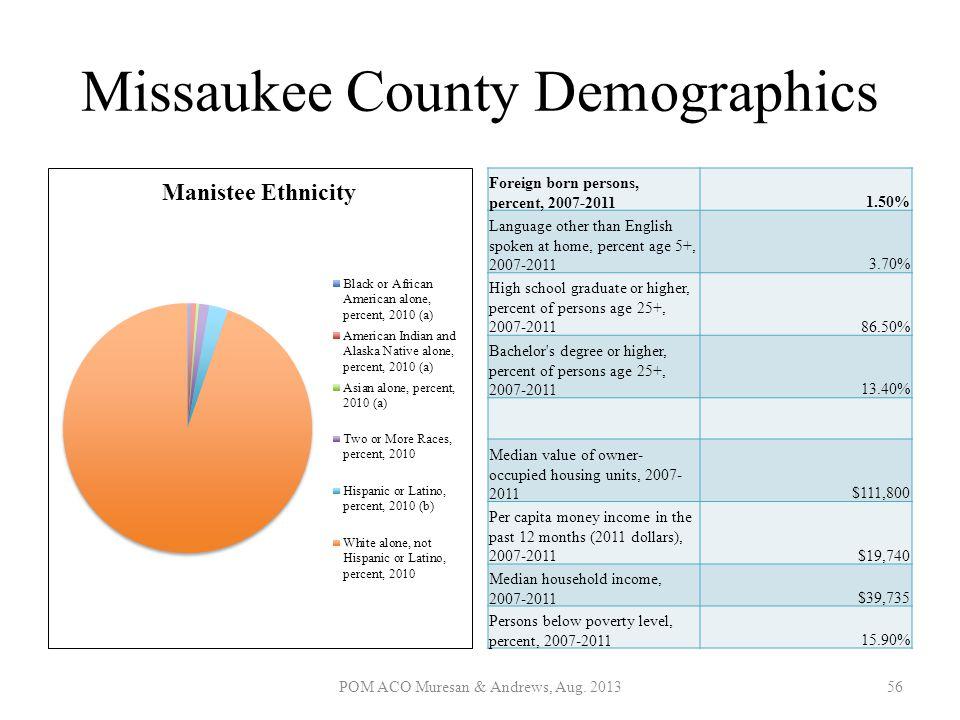 Missaukee County Demographics