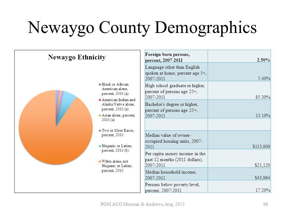 Newaygo County Demographics