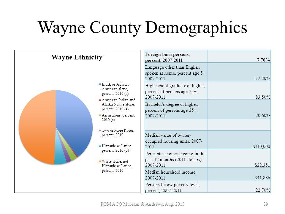 Wayne County Demographics