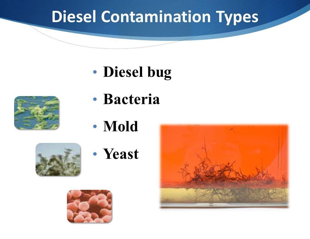 Diesel Contamination Types